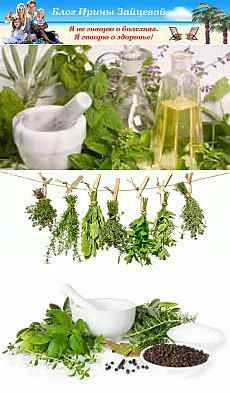 Herbs for female health | Irina Zaytseva's Blog